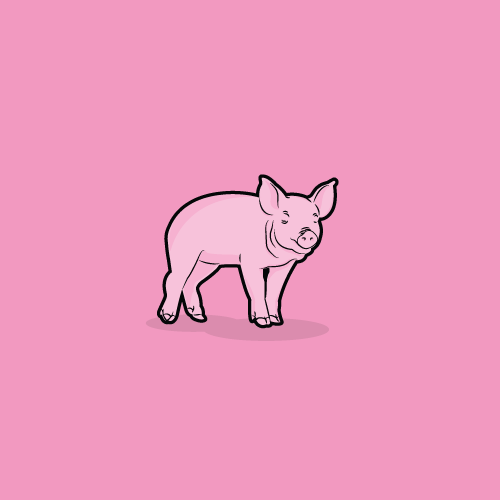 squat-blog-illustrations-18-pig