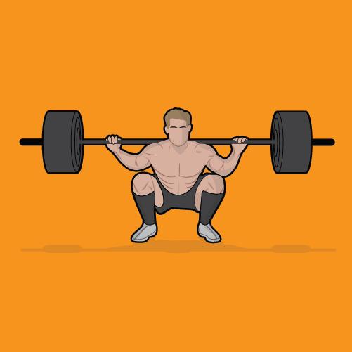 squat-blog-illustrations-13-weight