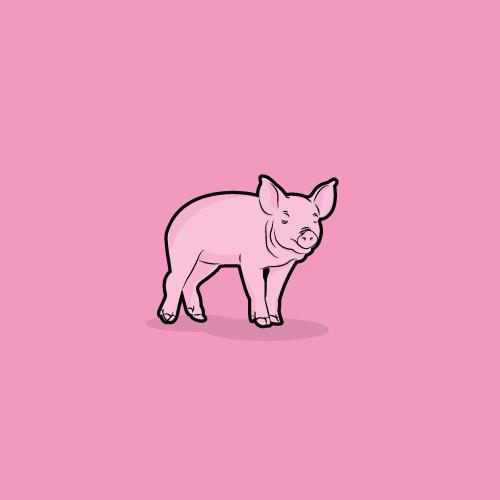 squat-blog-illustrations-18-pig